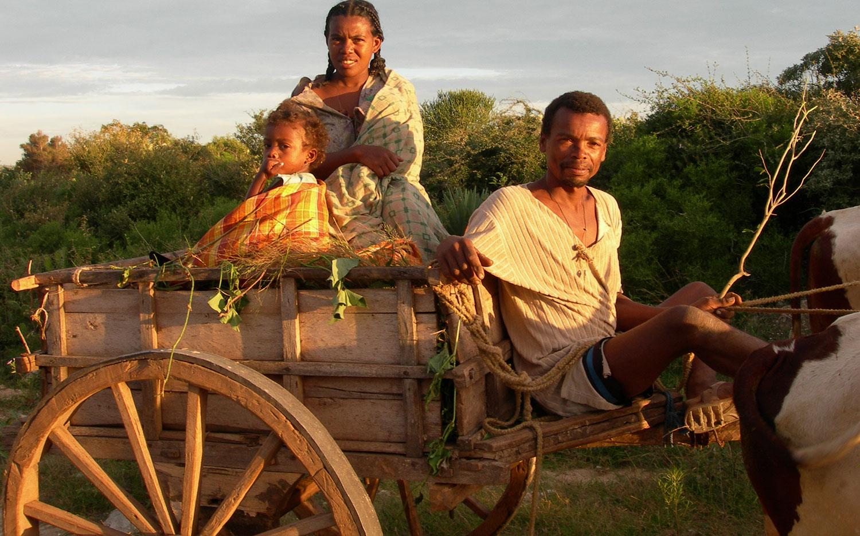 Madagascar Cocacci le chocolat